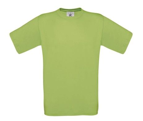 camiseta manga corta hombre pistacho